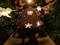 alberelli-stellati-cacao