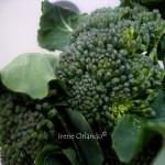 pici-toscani-sparacelli-broccoletti3